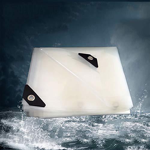 WXZX Lona Transparente Impermeable, Tela De Plástico Espesante Impermeable PE para Acampar, Pesca, Jardinería, Cubierta De Dosel De Plantas con Ojales,Toldo Invernadero Jardin(1mX1m)
