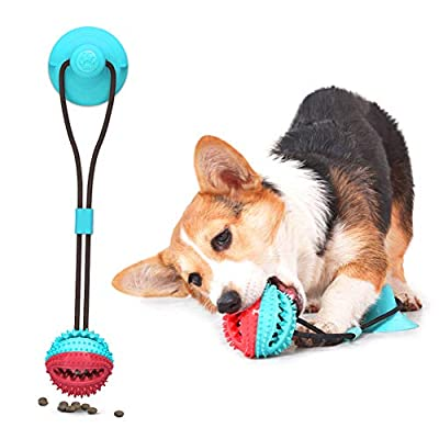 AnNido Pet Bite Toy, Dog Toy Ball, Suction Cup Dog Toy, Puppy Treat ball, Pet Molar Bite Toy, Chew Ball Toy Cleaning Teeth Multifunction for Pet, Interactive Toy Ball