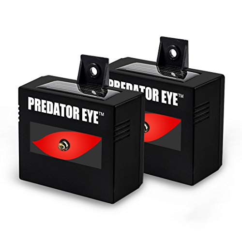 ASPECTEK Predator Eye Night Time Solar Powered Animal Repeller - 2 Pack, Waterproof, Animal Control, Nocturnal Animals, Outdoor Use