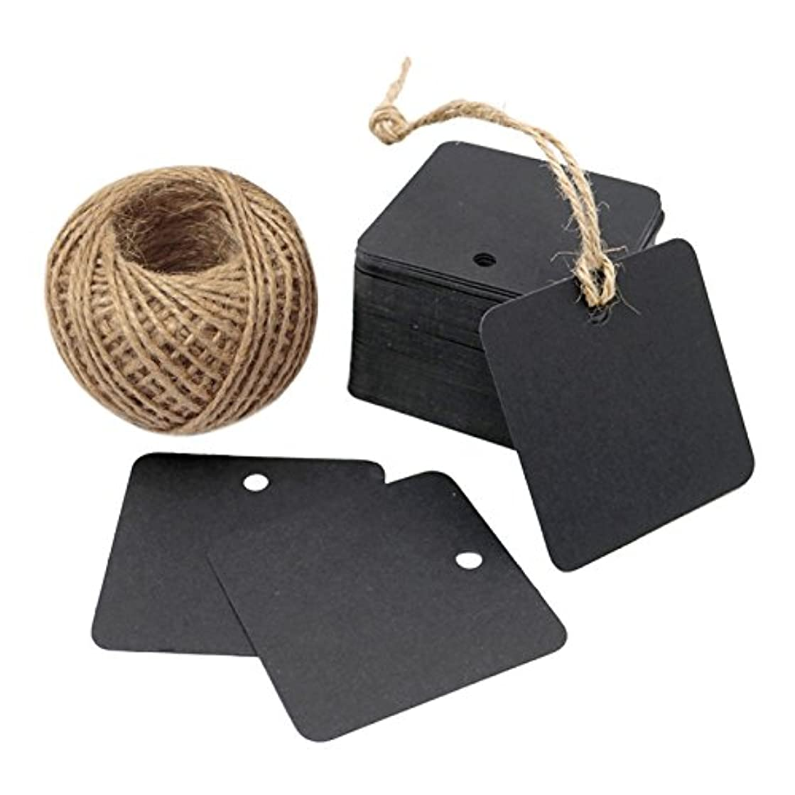 100 Pcs Square Gift Tags with String,Blank Kraft Paper Tags with 100 Feet Jute Twine for Wedding Favor,Christmas (Black)