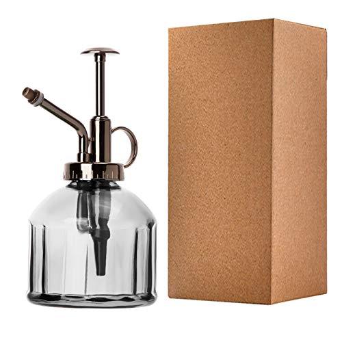 ANSUG Botella de Spray de Riego de Vidrio Estilo Vintage, pulverizador de Plantas, con Bomba, Cristal Decorativo Regadera pequeña Vintage Retro Forma Transparente/200ml
