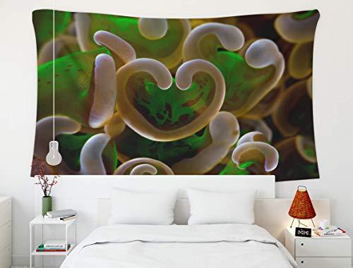 Tapiz de Pared Colgante, Estampado de Animales, Tapiz, tapices para el hogar y el Dormitorio D & Eacute; Cor LPS Hammer Coral pedregoso en Tonos de neón Verde y Plateado Blanco en un Arrecife en Raja