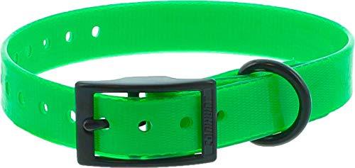 Collar Perro Verde Poliuretano 45cm hebilla doble, gravable (ver las detalles)