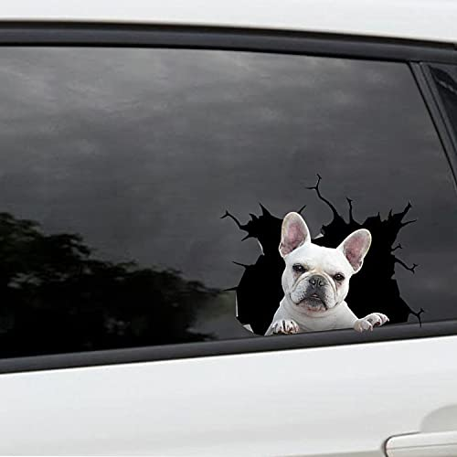 2 Piece Frenchie Car Stickers, Waterproof Truck Decals - Dog Side Rear Window Decals for Cars, Cooler, Fridge, Wall, Laptop Collection 2 Size 8 x 8 in