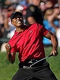 Tiger Woods Poster Standardgröße 45,7 x 61 cm