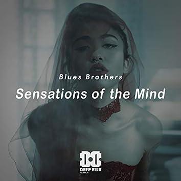 Sensations of the Mind