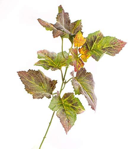 artplants.de Künstlicher Traubenblatt Zweig NOAH, 10 Blätter, grün-rot, 35cm - Kunst Zweig - künstlicher Traubenzweig
