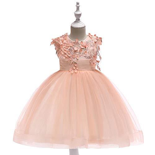 WTFYSYN Vestido Formal para Damas de Honor para niños,Vestido de Princesa de Malla de Bordado para niños, Vestido de Sombra de Rendimiento de Piano-Polvo de Carne_150 cm