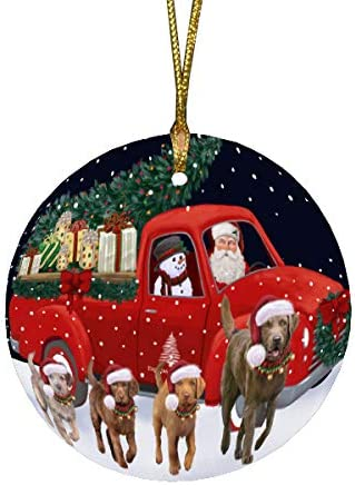 Doggie of the Day Christmas Express C Delivery Running Truck security Louisville-Jefferson County Mall Red