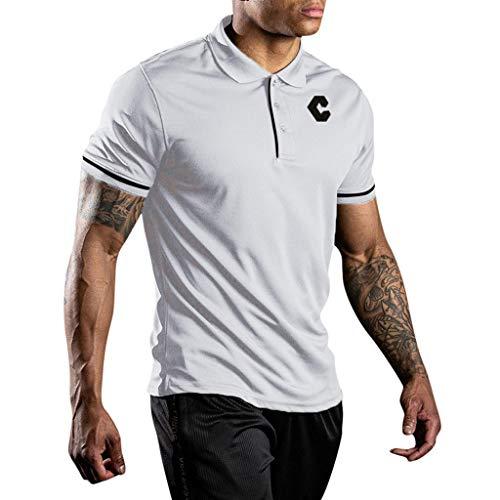 Sylar Hombre Camisa Polo Plana Manga Corta Camisetas Hombre Originales Tops De Verano Elegante Polos De Básica Camiseta para Hombres Diario Casual T-Shirt Blusas Camisetas Secado Rápido Color Sólido