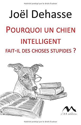 Pourquoi un chien intelligent fait-il des choses stupides?