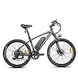 Rattan 48V 350W Electric Mountain Ebikes Electric Bike for...