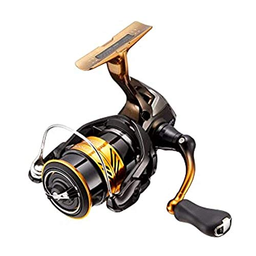 SHIMANO Angelrolle - STRADIC 4000 FL