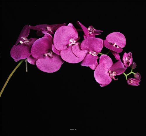 Artif-deco - Orchidee Lisa Artificielle Rose Intense h 98 cm 8 fleurons 4 Boutons Qualite Pro - Choisissez Votre Coloris: Rose Intense