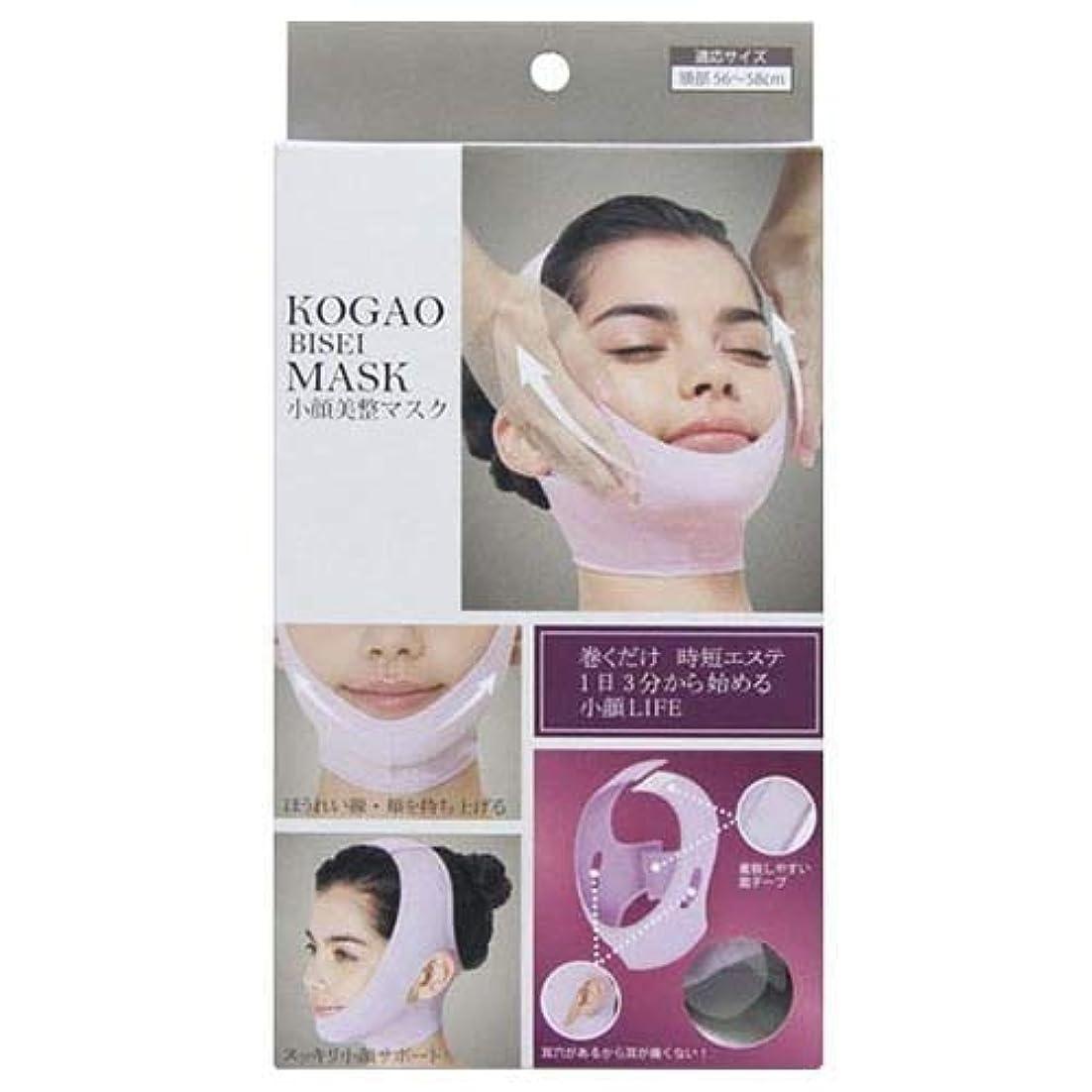 定常同盟縫うグローバル?ジャパン 小顔美整マスク ふつう ラベンダー 1個