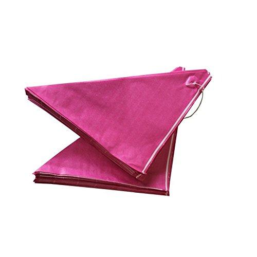 Imbiss- und Partyzubehör Spitztüten aus Papier Länge ca. 23 cm für ca. 250 g Inhalt (100 Stück, pink)