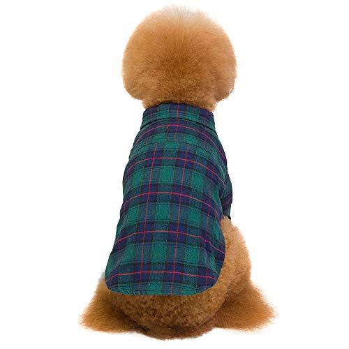 Amphia - Hund Hoodie,Kariertes Hemd - Pet Kleidung Plaid Teddy Dog Shirt Mode Zwei-Bein-Shirt mit Zugloch(Grün,S)