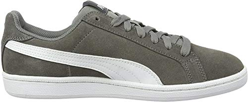 Puma Unisex-Erwachsene Smashsd Sneaker, Grau (Steel Grey White 14), 43 EU