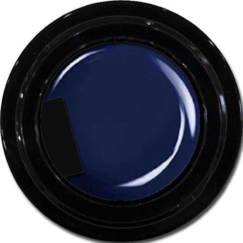 誤解を招く札入れ元に戻すカラージェル enchant color gel M709 Indigo Navy 3g/ マットカラージェル M709 インディゴネイビー 3グラム