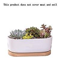 トレイ大輪の花をリビングルームに適した鍋、研究や他の場所でのクリエイティブデスクトップ長辺ラウンドフラワーポット多肉植物鍋白いセラミック植木鉢 植物のためのセラミックポット (Color : White)