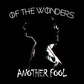 Another Fool (feat. Aaliyah Nicole)