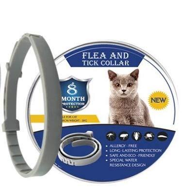 LYDBM 2019 Nueva 8 Mes pulgas y garrapatas Prevención Collar for Gatos Perro Mosquitos Repelente de Insectos Los Mosquitos Collar (Color : 38cm For Cats, Talla : As The Picture Shows)