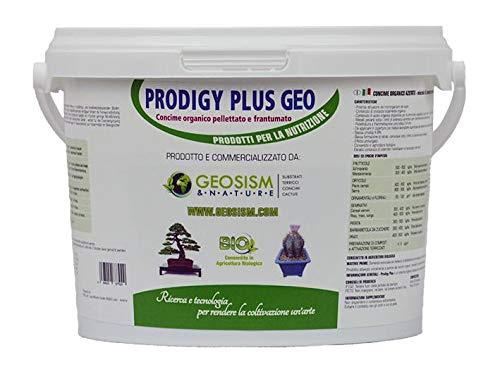 Prodigy Plus 1/3 mm (1 kg), concime granulare per bonsai, piante e fiori