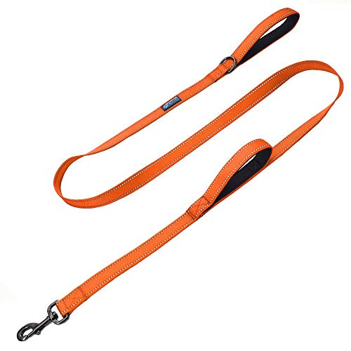 Max and Neo Double Handle Traffic Dog Leash Reflective - We Donate a Leash to a Dog Rescue for Every Leash Sold (Orange, 6 FT)