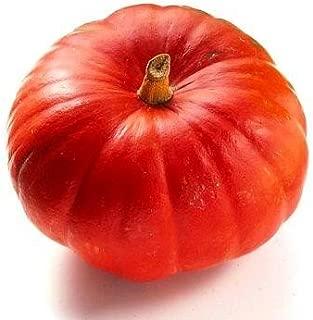 Organic Heirloom 16 Seeds Japanese Squash Pumpkin Orange Red Fruit Very Sweet Flavor Vine Creeper Plant Kabocha F70