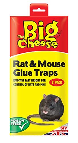 Dicoal - Trampa para rata raton con pegamento