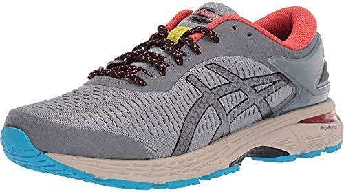 ASICS GelKayano 25 (2E Wide) Shoe Men's