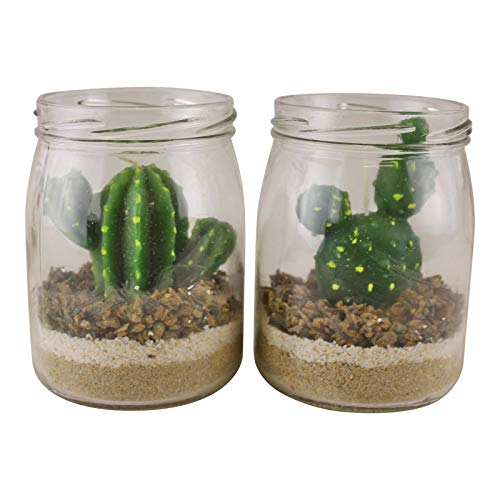 EliteKoopers Set of 2 Cacti Tea Lights in Glass Jars For Home, Office Decoration Item