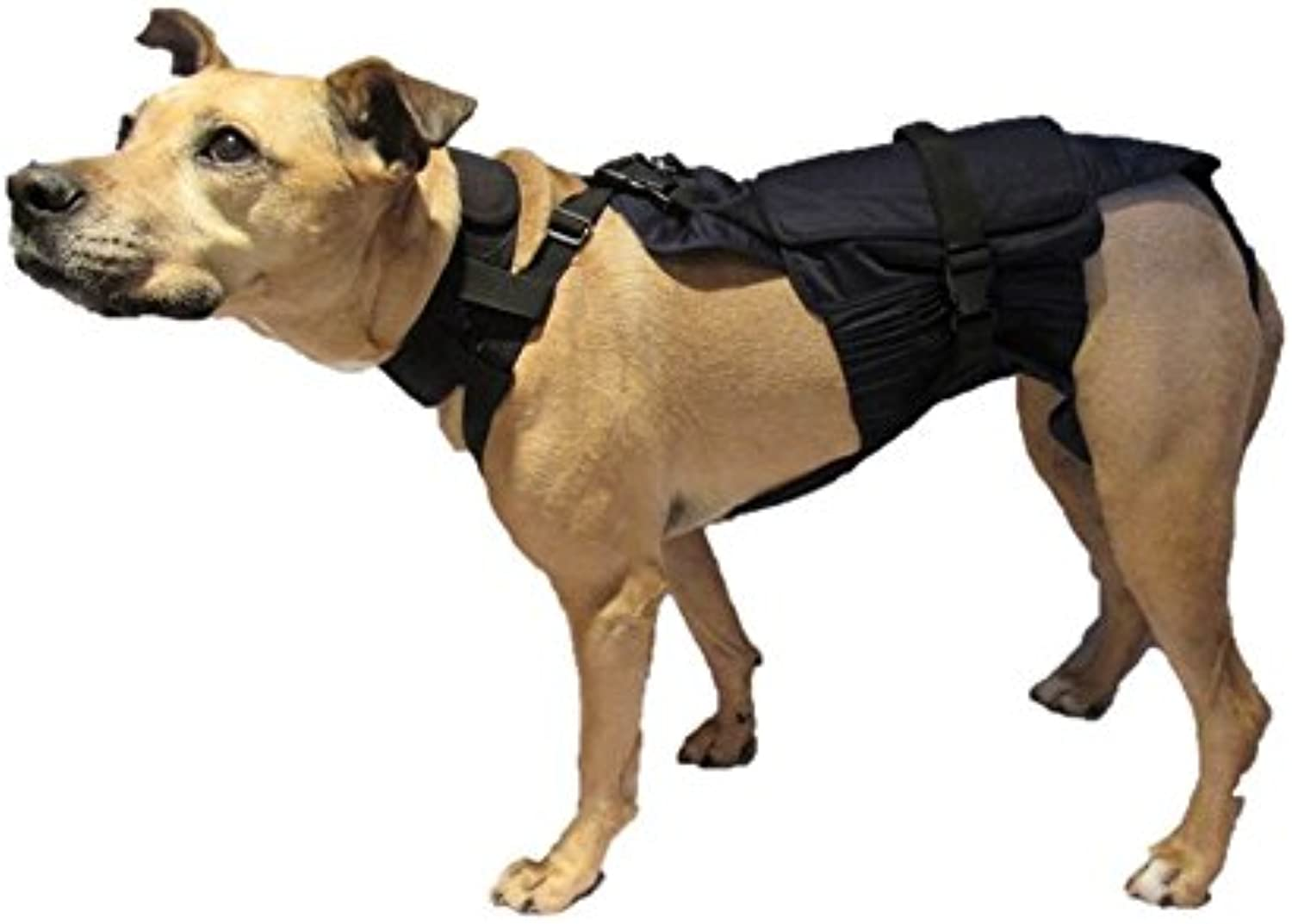 (M)LONG DOG Diaper Wrap 30 Pounds to 40 Pounds or 17 Inches to 19 Inches in Length (blueE)