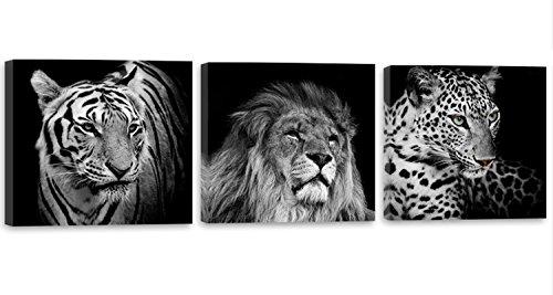 Feeby Frames, Cuadro en lienzo - 3 partes - Panorámico, Cuadro impresión, Cuadro decoración, Canvas 60x20 cm, LEÓN, TIGRE, ELEFANTE, ANIMALES, ÁFRICA, SAFARI, BLANCO Y NEGRO
