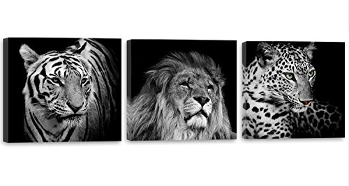 Feeby Frames, Cuadro en lienzo - 3 partes - Panorámico, Cuadro impresión, Cuadro decoración, Canvas 120x40 cm, LEÓN, TIGRE, ELEFANTE, ANIMALES, ÁFRICA, SAFARI, BLANCO Y NEGRO