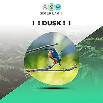 !  ! Dusk !  !