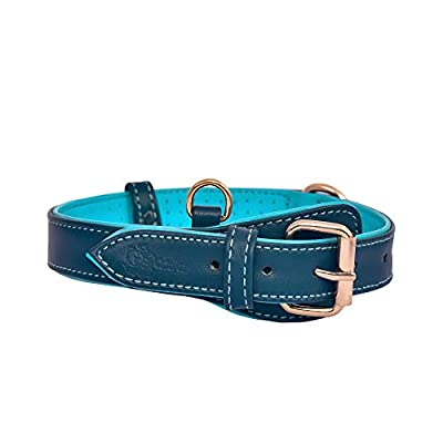 """CUTOPET Genuine Leather Dog Collar   Soft & Breathable Inner Padding   Padded Buckle  Heavy Duty, Handmade, Premium Quality   Dual Tone Color   (S-(11.5""""-15.5""""), Prussian Blue/Turquoise Blue)"""