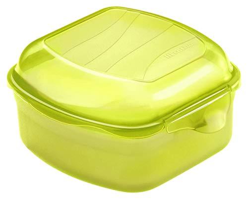 Rotho Fun Vesperdose 0,45l mit Klickverschluss, Kunststoff (PP) BPA-frei, grün, 0,45l (11,5 x 11,0 x 6,5 cm)