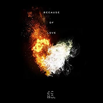 Because of Love (feat. Sher Wye Leong)