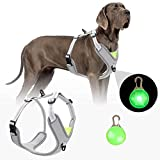 Hundegeschirr für Große Hunde No-Pull Laufgeschirre für Hunde Verstellbar Brustgeschirr Atmungsaktiv Ausbruchsicher Ausbildung Reflektierend Hundegeschirr Set Geeignet für mittlere und große Hunde
