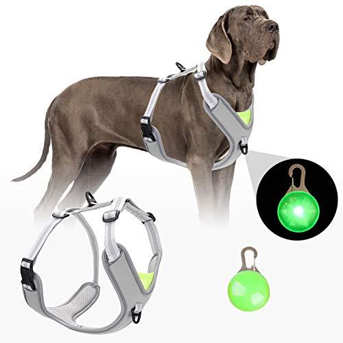 Tvmall -  Hundegeschirr für