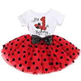 It's My 1st/2nd Birthday Outfit Toddler Baby Girl ONE Party Tutu Dress for Kids Half/First Onesie Crown Infant Skirt Sets for Photo Props Costume Ladybug-My 1st Birthday 1Y