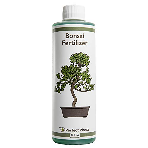 Perfect Plants Liquid Bonsai Fertilizer | 8oz. of Premium Concentrated Indoor and Outdoor Bonsai Fertilizer | Use with All Bonsai Varieties | Trees in Pots