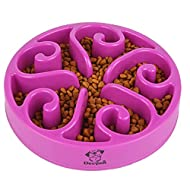 Decyam Pet Fun Feeder Dog Bowl Slow Feeder, Bloat Stop Dog Food Bowl Maze Interactive Puzzle Cat Bow...