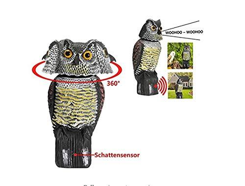 Scopri offerta per BriskyM Gufo spaventapasseri Decoy Statua Suoni Spaventosi realistici e Ombra Gufo Falso Parassita per Esterni Dissuasore per Uccelli per Cortile Giardino Protezione Giardino (con la Voce)