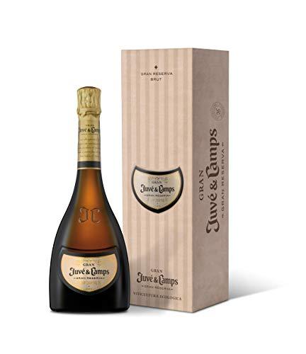 Juvé y Camps, Cava Gran Juvé Gran Reserva Brut, 1 botella de 75 cl, Macabeu, Xarel·lo, Parellada, Chardonnay (070010)