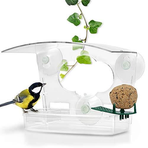 WILDLIFE FRIEND | 3-in-1 Fenster Futterhaus für Vögel aus transparentem Acrylglas mit Saugnäpfen, Vogelfutterhaus für Fenster mit Vogeltränke für Meisen, Spatzen & kleineren Wildvögel