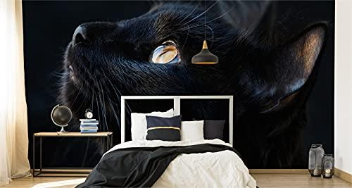 Muralo Papel pintado fotográfico de 450 x 300 cm, diseño de gato negro de cerca, para pared de salón XXL, 450 x 300 cm