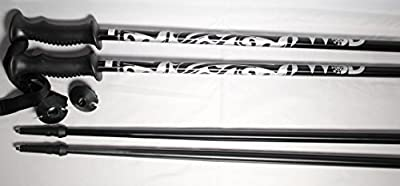 WSD Ski Poles Alpine Aluminum Black/Silver Ski Poles Pair with Baskets + Extra Powder Baskets New