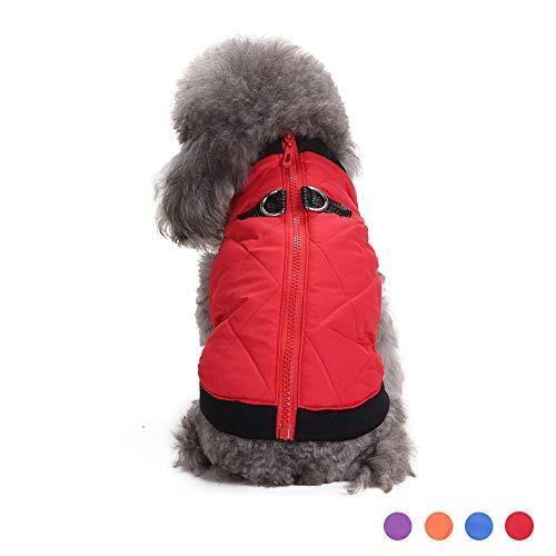 Oncpcare Hundemantel für den Winter, warm, für kleine Hunde, kaltes Wetter, Kleidung für Katzen, Welpen, kleine Hunde